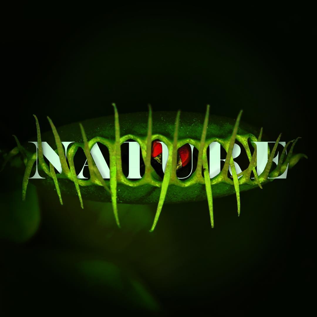 -nature1080x1080