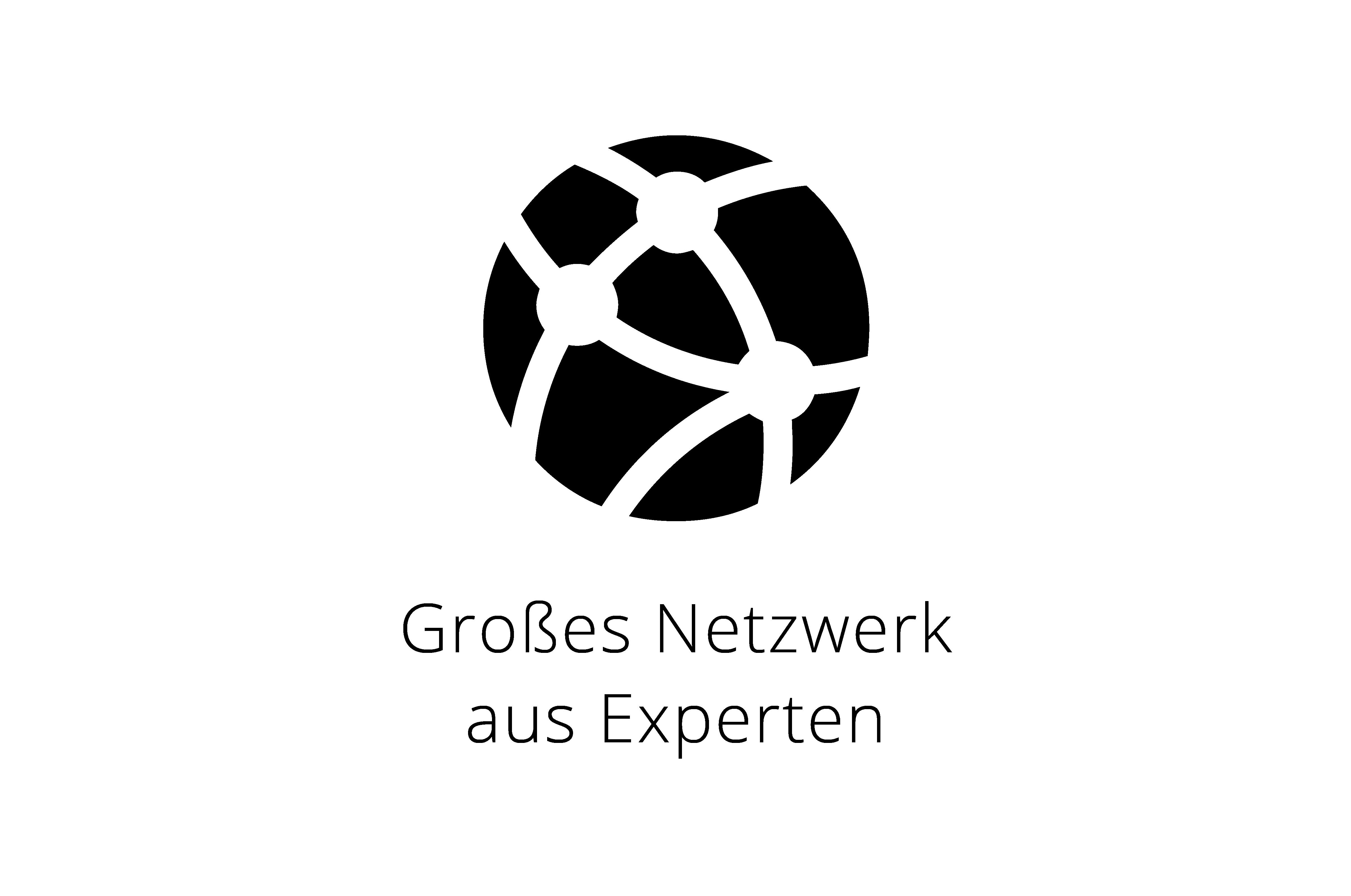 netzwerk-experten-icon-small